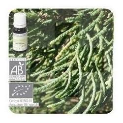 Pranarom aceite esencial cipres de provenza bio 10 ml