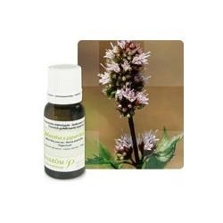 Pranarom aceite esencial menta piperita bio 10 ml