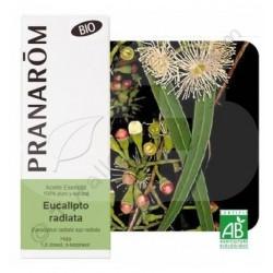 Aceite esencial de eucalipto radiata 10 ml. BIO